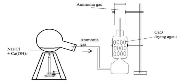 Image result for preparations of ammonia gas