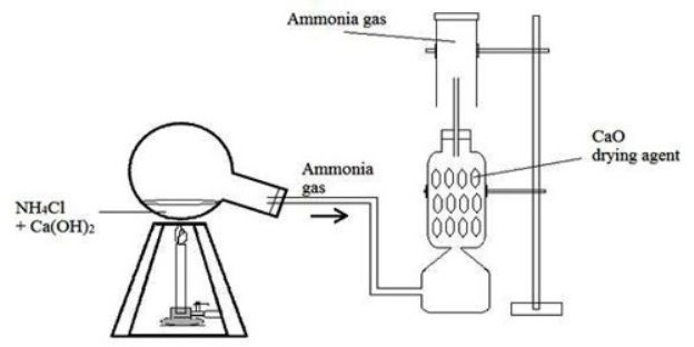 C:UsersKYAMBODocumentsSTD 8Topical-scienceSCHEMES DOWNLOADLab-preparation-of-Ammonia.jpg