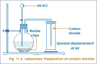 Image result for preparations of carbon dioxide